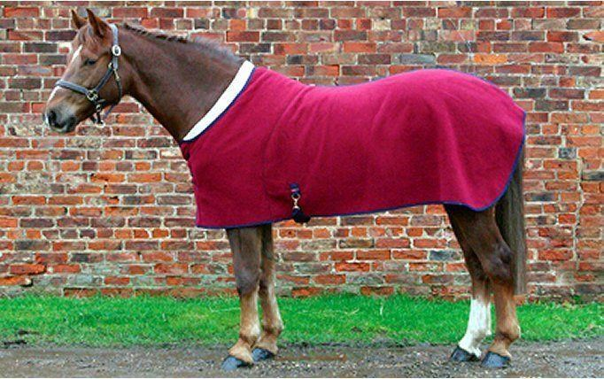 Comfort Zone Lapel Rug Best Seller Rb Equestrian